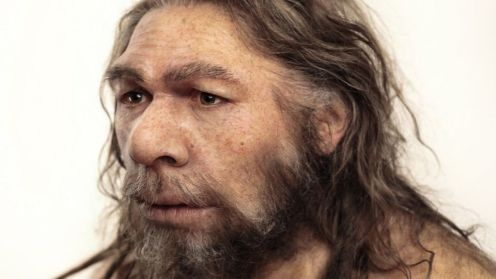 DNA points to Neanderthal breeding barrier - BBC News