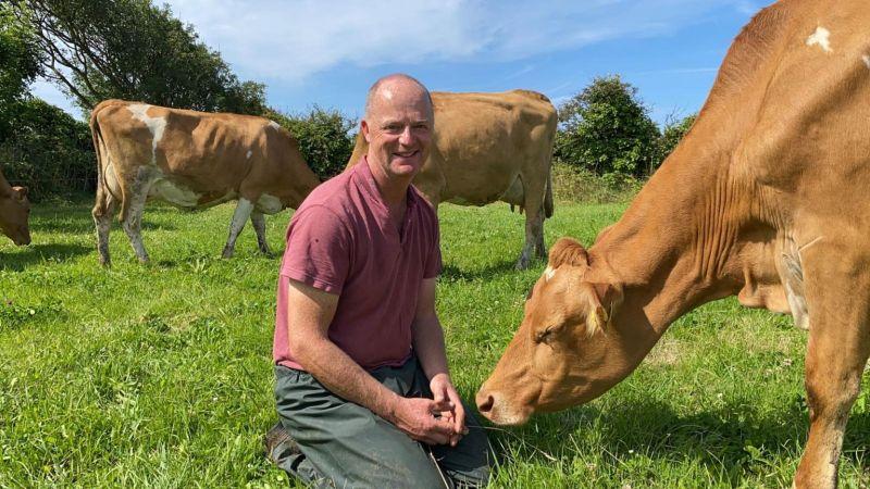 Jason Salisbury with cows