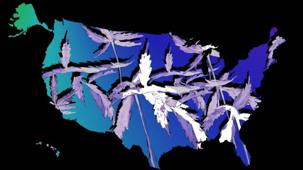map of US with weed background