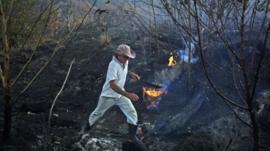 O que pode acelerar ou retardar a recuperação da floresta consumida pelo fogo na Amazônia