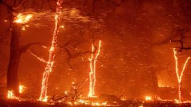 Embers fly as wind and flames from the Camp fire tear through Paradise, California