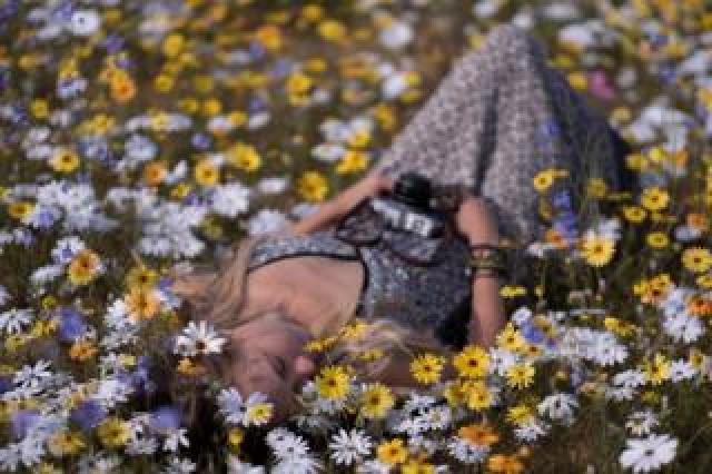 A woman lying on the ground among flowers
