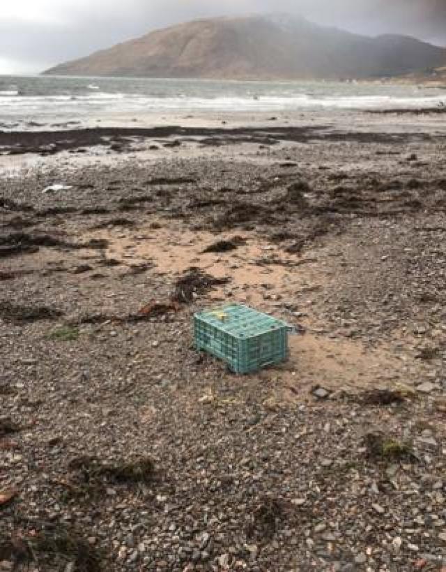 Rubbish at Glenelg
