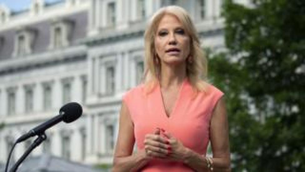 trump Senior Counsellor Kellyanne Conway speaks to members of the media outside the White House in Washington D.C., USA, 17 July 2020