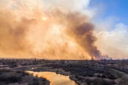 A forest fire burns and smoke billows into the sky