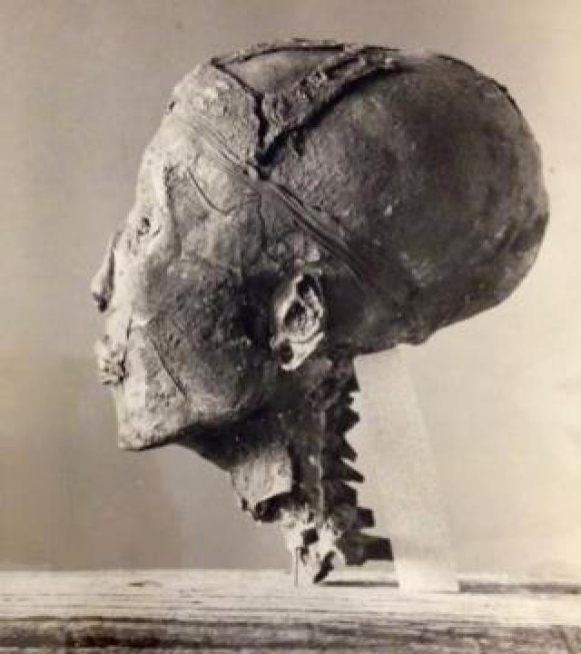 Profile photograph of King Tutankhamun's head