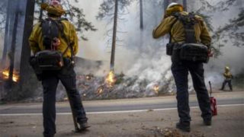 Fire fighters use back burning in a bid to tackle wildfires