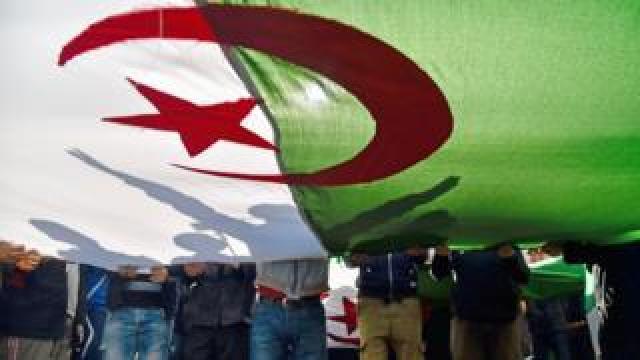 Protesters holding the Algerian flag in Algiers, Algeria - Friday 28 February 2020