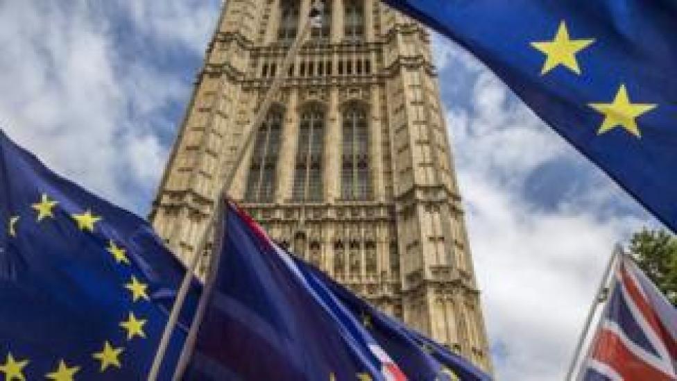 EU flags at Westminster