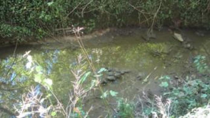 Grendon Brook