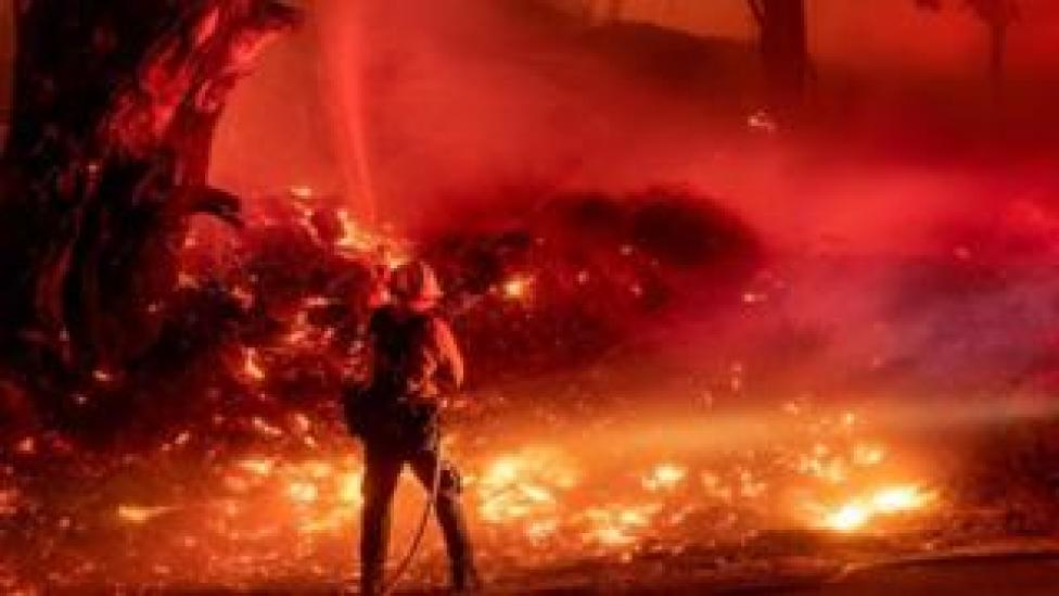 trump A firefighter douses flames from a backfire during the Maria fire in Santa Paula, California