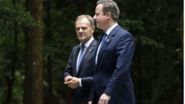 European Council President Donald Tusk with former PM David Cameron