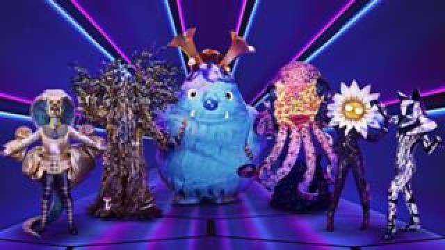 Pharaoh, Tree, Monster, Octopus, Daisy and Fox from The Masked Singer