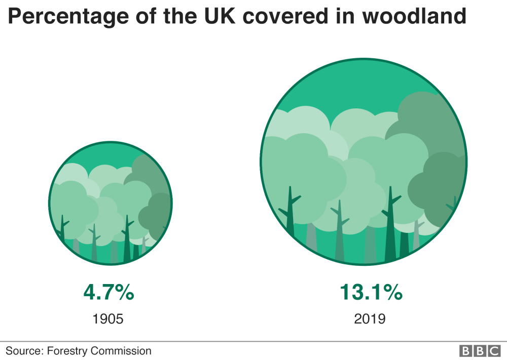 trump Charts showing percentrage of the UK covered in woodland