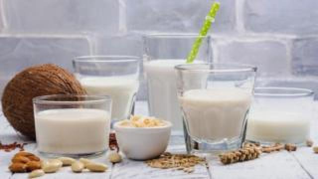 A selection of plant based milks