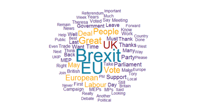 Word cloud showing Brexit was the most tweeted word by UK MEPs