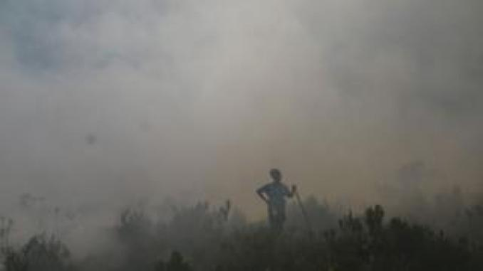 a firefighter in the midst of smoke