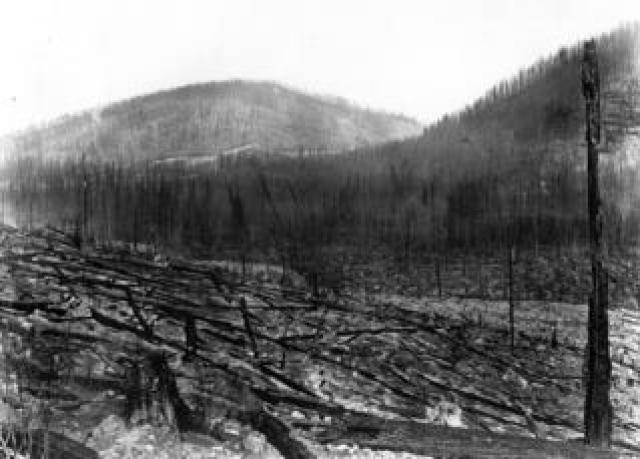 Montana valley burned in the great dire of 1910