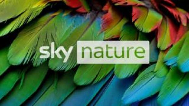 Sky's new nature channel launches today - with HDR programmes available on-demand
