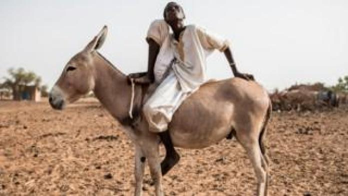 A young Fulani herder sits on his donkey in the village of Mbetiou Peulh on May 29, 2020.