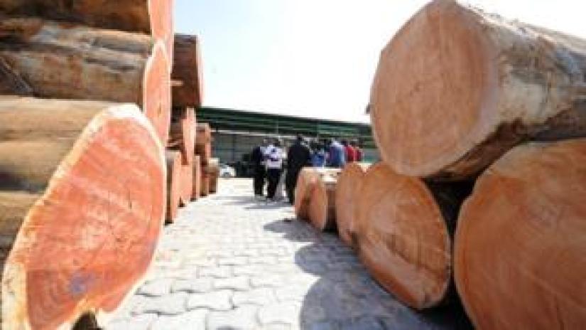 Wood at Gabonese port