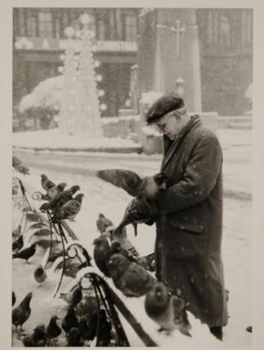Pigeons at George Square, 1964