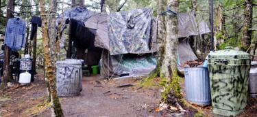 kamp u šumi