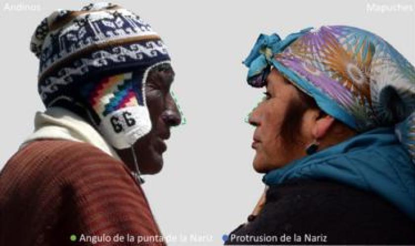 Diferencias de la forma de la nariz en personas con ancestría andina o mapuche