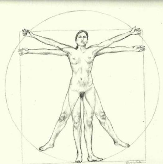 La mujer de Vitruvio