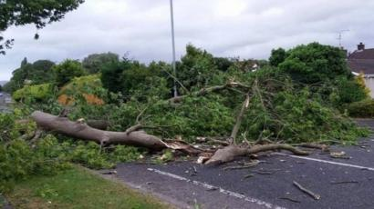 About 200 Roads Cleared As Storm Hector Leaves Debris Trail Bbc News