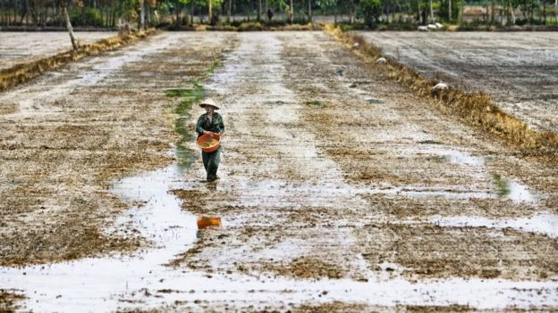 Região rural no Vietnã