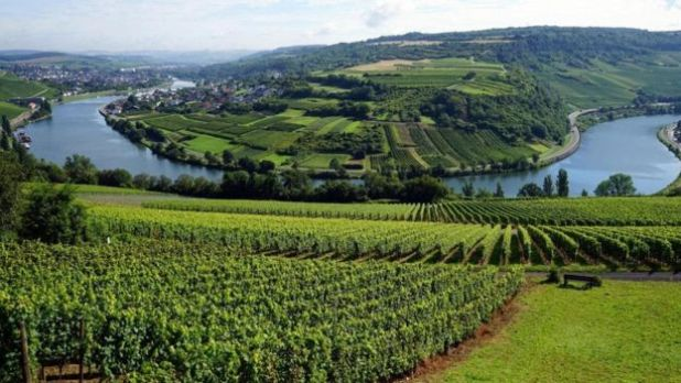 تقع شينغن بوادي موزيل في لوكسمبورغ حيث زراعة الكروم التي تشتهر بها البلاد
