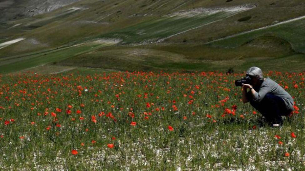 Turista tomando fotos de las flores en la planicie de Piano Grande