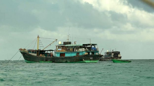Large fishing boats from Tanmen
