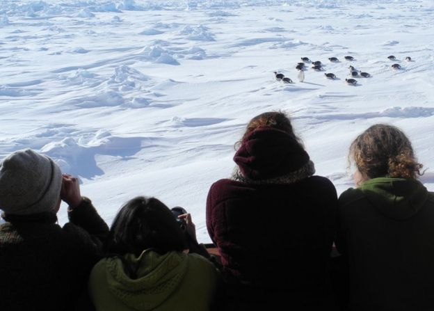 Participants will observe the effect of climate change on Antarctica