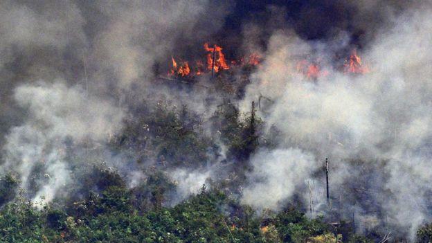 Vista aérea de fuego y humo en la Amazonía.