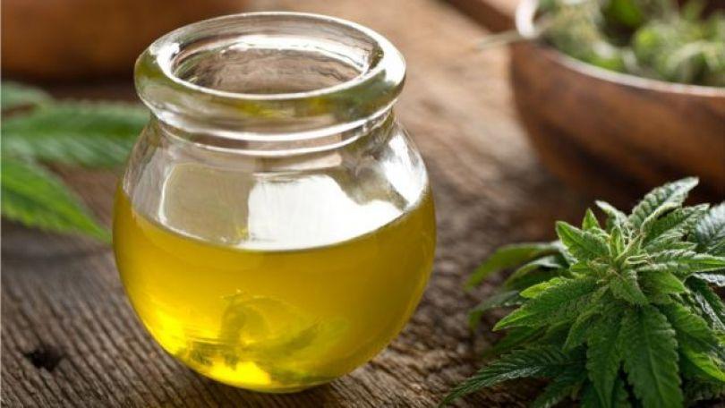 Fotografia de um pote com azeite de cannabis dentro; do lado de fora, pedaços de planta de maconha
