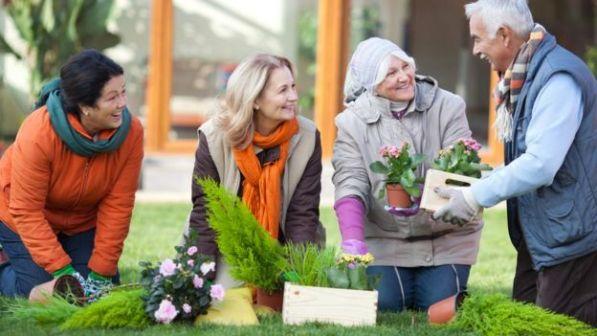 Pessoas conversando sobre jardinagem