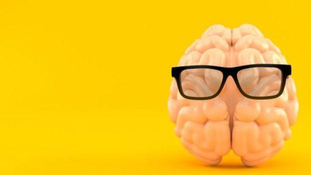 Cerebro de plástico con gafas