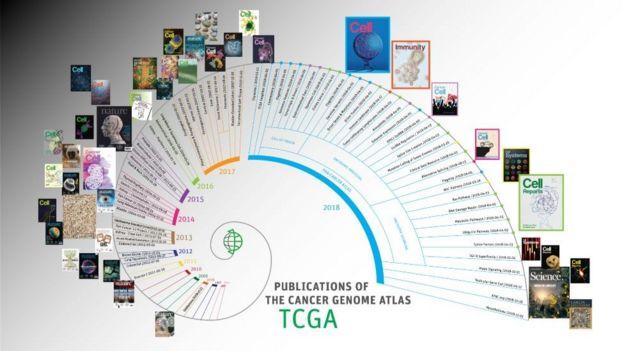 El Atlas del Genoma del Cáncer