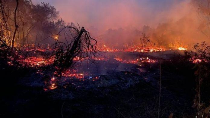 Fogo no Pantanal