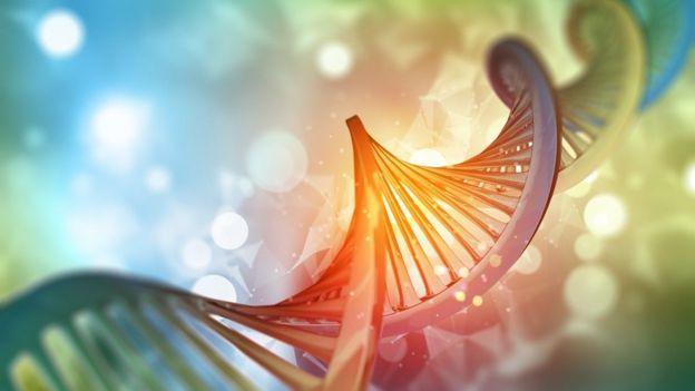 Ilustración genoma