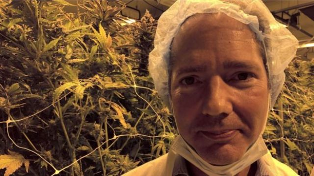 Jonathan Djanogly in weed