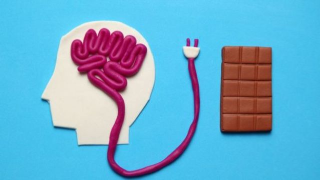 Ilustracao mostra cerebro e uma barra de chocolate