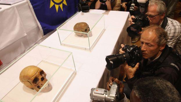 Fotógrafos frente a cráneos en cajas de vidrio