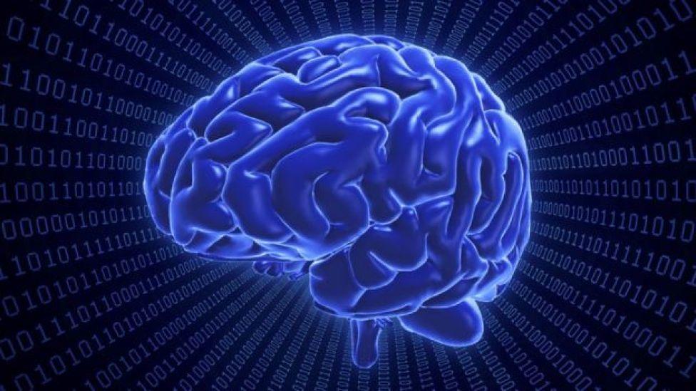 صورة إشعاعية للمخ البشري