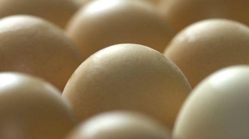protein bulunan yumurtalar.