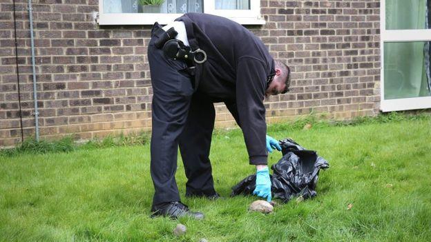 Risultati immagini per cat killer london 2018