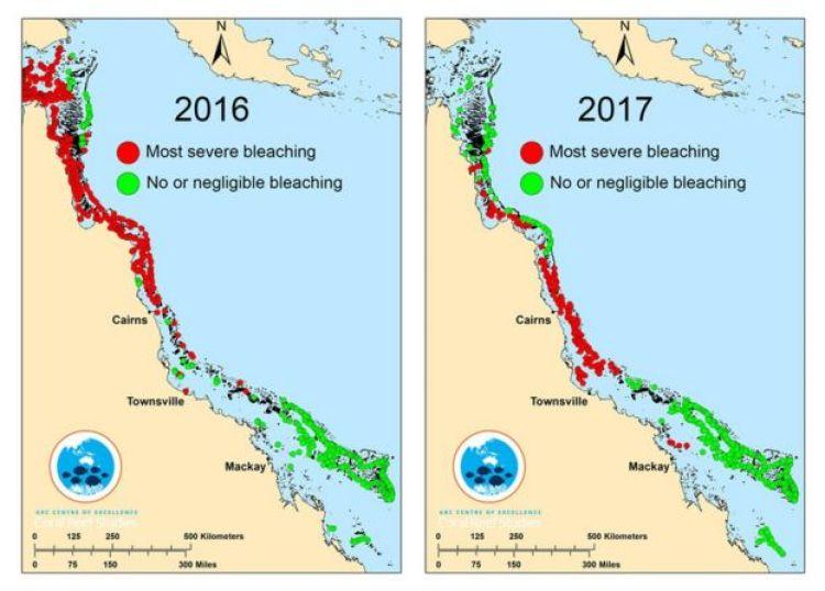 Un grafico che mostra i danni alla Grande Barriera Corallina nel 2016 e nel 2017