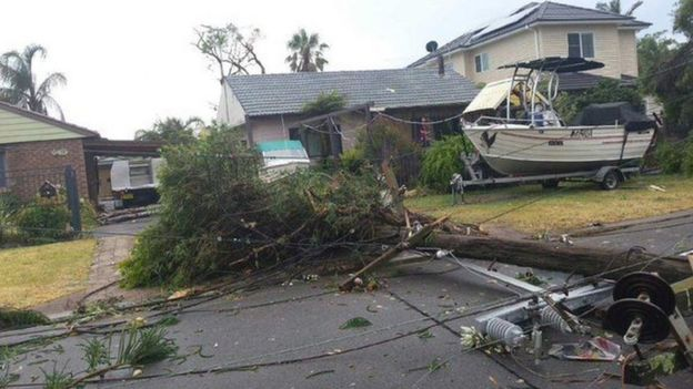 Trees and powerlines have littered the streets of Kurnell in Sydney's south